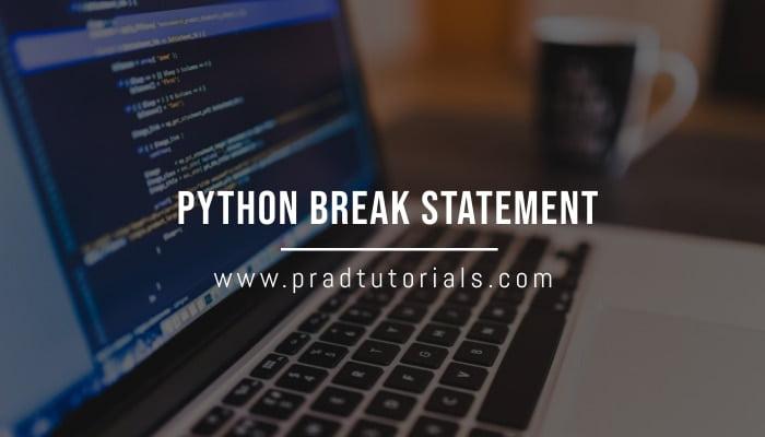 python break statement